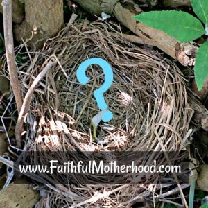 Empty Nest - protect the kids in our nest
