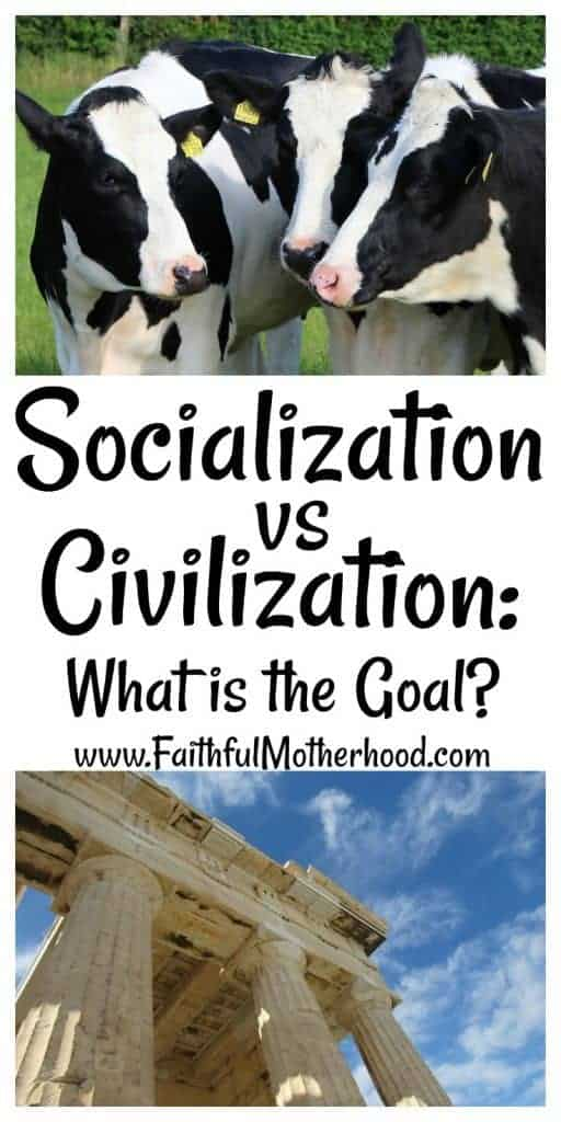 Socialization vs Civilization what is the goal