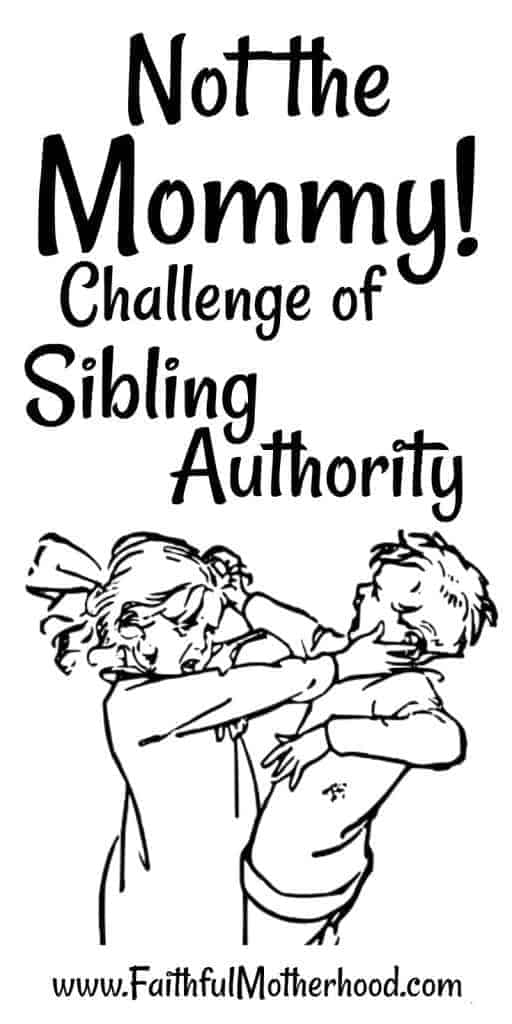 Bossy Siblings fighting. title: Not the Mommy Challenge of Sibling Authority