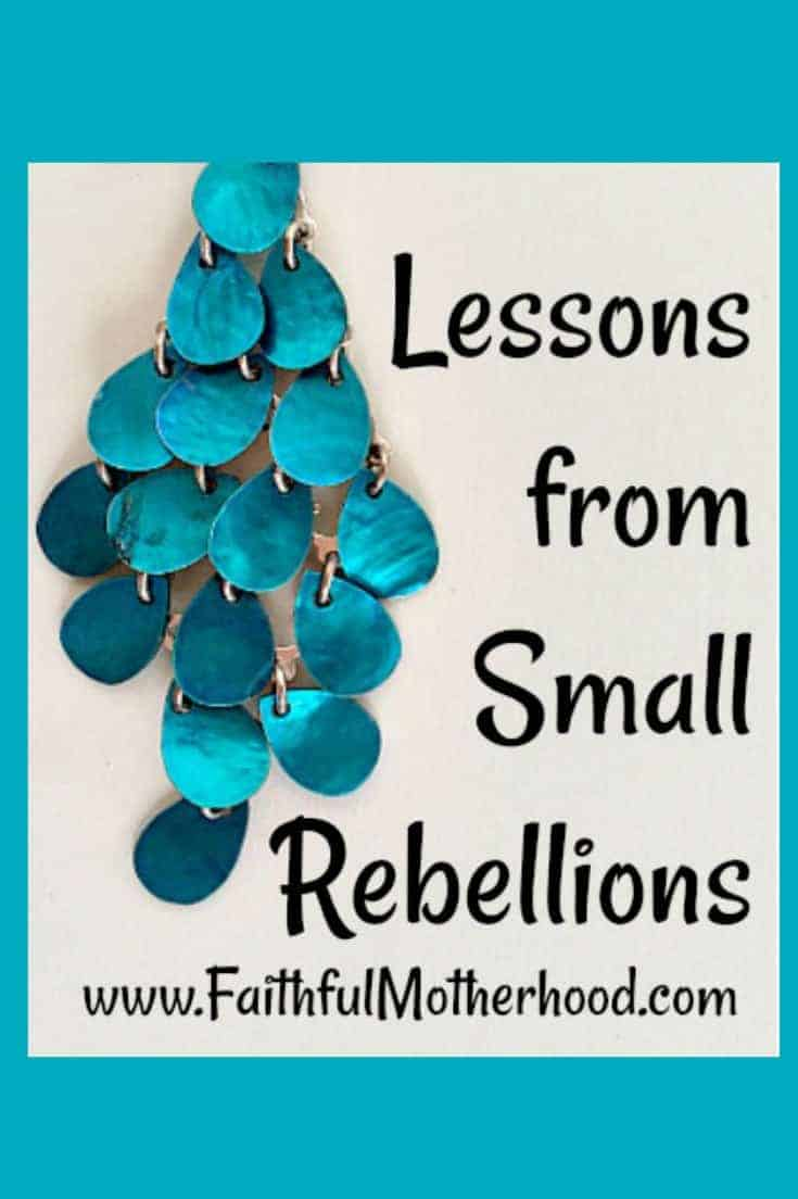 Earrings Small Rebellions Pinterest