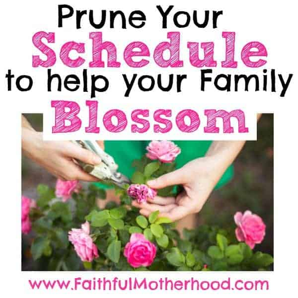 Woman pruning pink flowers. Title: Prune Your schedule to help your family blossom