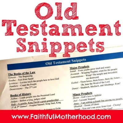 Old Testament Summary Snippets: Powerful One-Liners to Quickly Remember Each Book