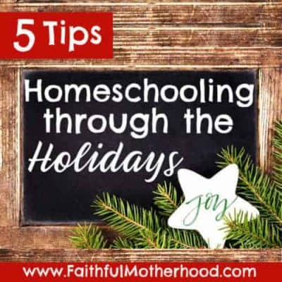 5 Tips for Homeschooling during the Holidays