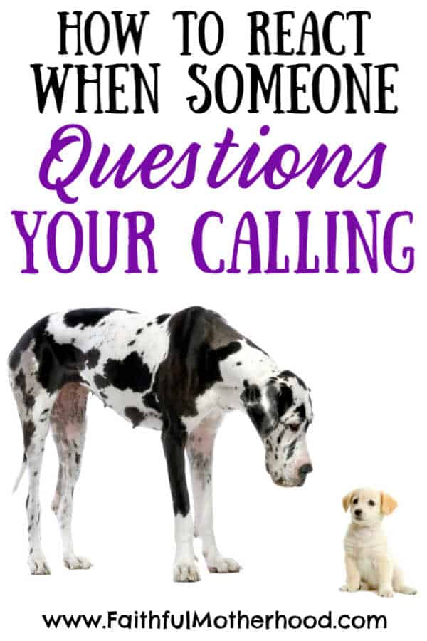 Big Dog and small dog. Title: How to React when someone questions your calling.