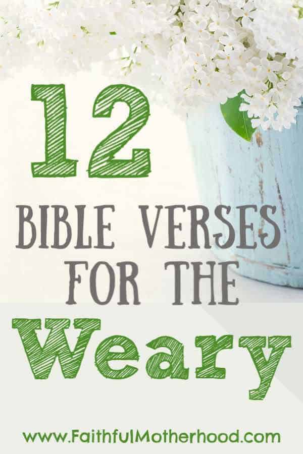 pot with white lilacs and title: 12 Bible verses for the weary