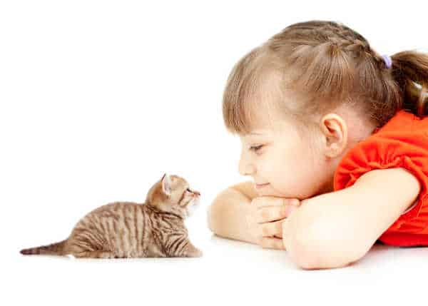 Teach Kids Kindness - little kitten and girl in orange